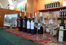 Terre del Sagrantino, le eccellenze umbre da gustare a Montefalco