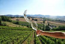 Fine settimana a Montecarotto per il Verdicchio in festa & Marche Jazz & Wine Festival