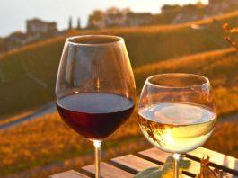 Wine Moment, Please: una serata dedicata al vino e ai sapori di montagna