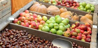 Torna a Portico di Romagna la Sagra dei Frutti di Bosco e del Sottobosco