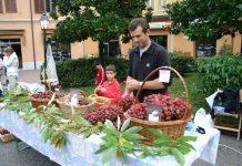Festa dei Frutti Dimenticati e del Marrone - foto CFC CAsola Valsenio