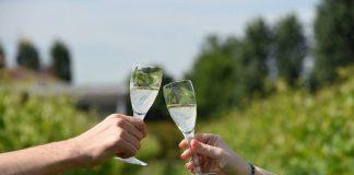Colli Bolognesi crescono: torna la Mostra Assaggio dei vini Doc e Docg