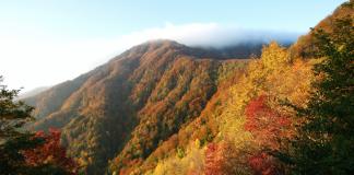Al via l'edizione 2017 di Autunno Slow alla scoperta delle Foreste Casentinesi