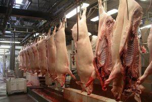 La carne e i suoi valori nell'alimentazione umana