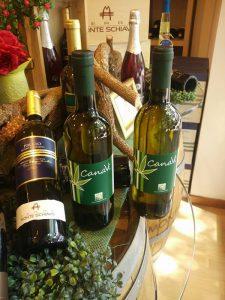 Canavì, dalle Marche il primo vino italiano ottenuto dalla canapa