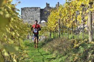 Si corre sabato il Valtellina Wine Trail, corsa speciale tra i vigneti della valle