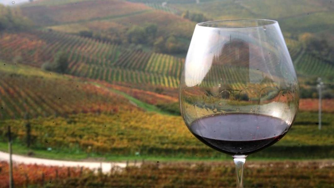 Il Piemonte nel calice, tornano i grandi rossi con Go Wine