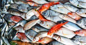 In Italia aumenta il consumo di pesce che arriva a 25 chili a testa
