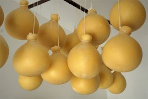 Prodotti tipici, il Caciocavallo Podolico, re dei formaggi meridionali
