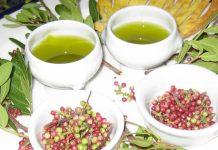 Olio di Lentischio, una cura antica per molti dolori, riscoperto anche per uso alimentare