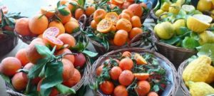 Fine settimana con AgruMi, i simboli dell'agricoltura mediterranea a Milano