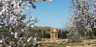 Agrigento festeggia la primavera con il Festival del mandorlo in fiore