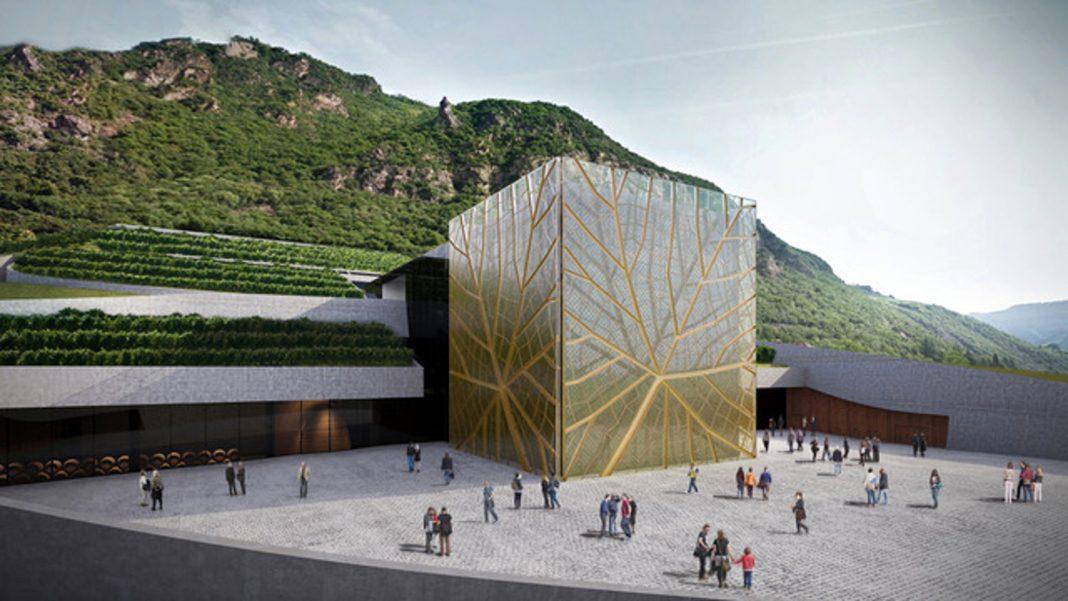 Cantina Bolzano: crescono i piccoli viticoltori di qualità