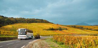In bus alla scoperta della Franciacorta, delle sue cantine e dei suoi vini