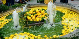 Monterosso, nelle Cinque Terre, si tinge di giallo per la Festa del limone