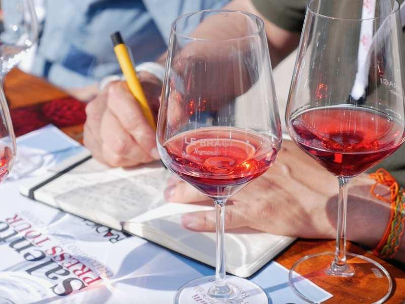 Radici del Sud: degustazione vini