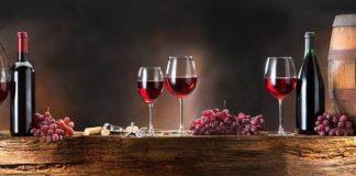 Vininfesta a Morbegno, la viticoltura della bassa Valtellina si presenta