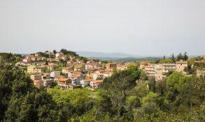 Una domenica di festa e di gusto in Sardegna, con la Sagra del tartufo di Laconi