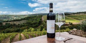Wine experience a Tenuta di Artimino: tutto il piacere della vendemmia