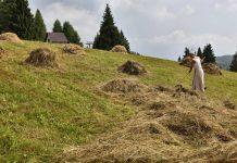 A Sutrio, in Carnia, si ritorna al passato con Fasjn la mede