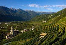 Luglio in Valtellina all'insegna dello sport, della birra, dell'enogastronomia e dell'arte