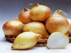 Prodotti tipici locali: la Cipolla di Sermide