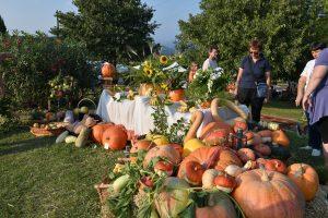 Ancora 10 giorni di gusto e divertimento alla Festa della Zucca di Pastrengo