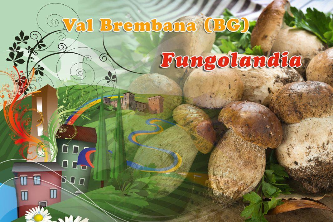 In Valbrembana ritorna Fungolandia: funghi e non solo