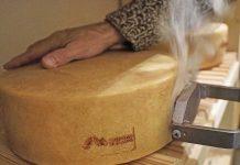 Trentino di Malga: un marchio per la tutela delle produzioni casearie d'alpeggio