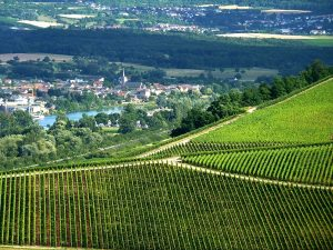 In Mosella un autunno sulla strada del vino