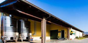 Azienda agricola Rebollini, cinquant'anni e non sentirli