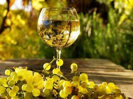 SI presenta a Forlì Vino prêt-à-porter, manuale per vittime della moda del vino