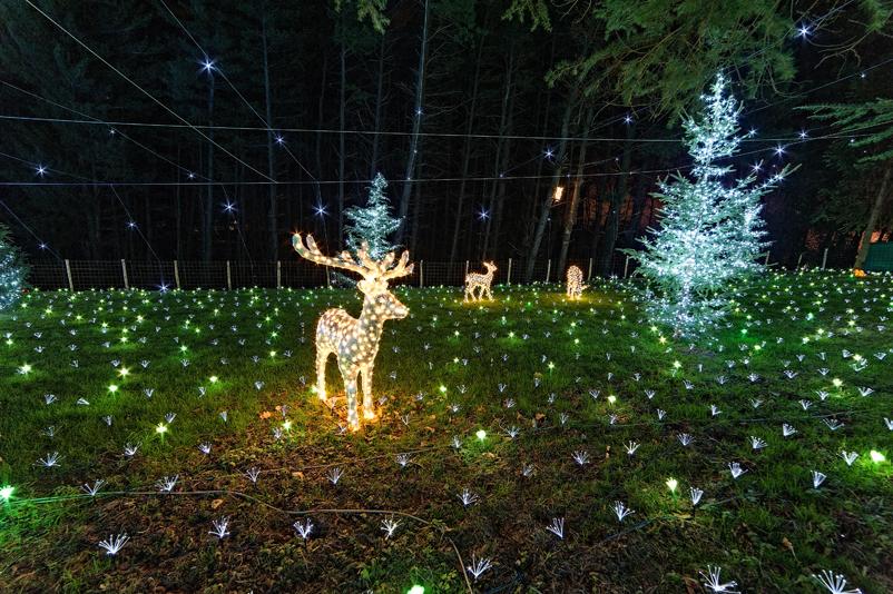 La magia del Natale torna ad illuminare Leggiuno