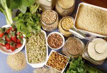Fico lancia Foodpedia, la Wikipedia del cibo