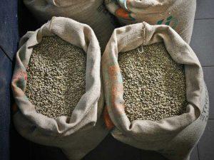 Il caffè, la bevanda più bevuta nel mondo dopo l'acqua