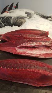 Salumi di Mare, la prima e unica salumeria ittica italiana