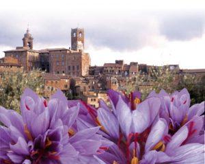 Una Pasqua di gusto a Città della Pieve tra enogastronomia e intrattenimenti