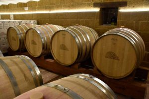 Tenuta Colombarda di Cesena, vini romagnoli di qualità