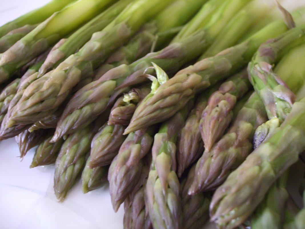 Prodotti tipici locali: gli Asparagi di Borgo d'Ale