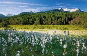 Sapori di Primavera in Aprica: al via i weekend dedicati al gusto in Valtellina
