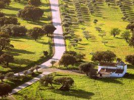 Alla scoperta dell' Alentejo, in un Portogallo inedito e misterioso