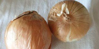 Ragù di cipolla e pancetta