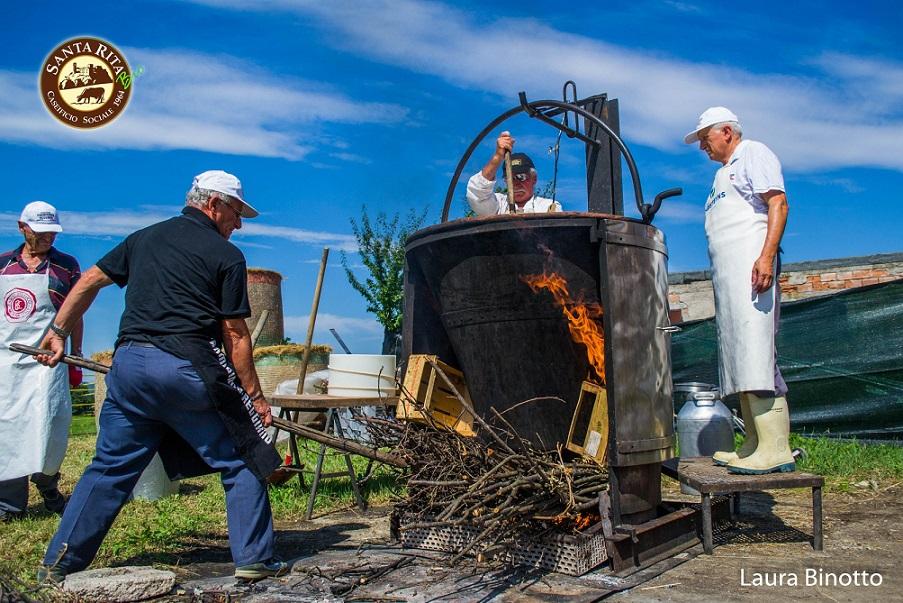 Preparazione della cagliata per la realizzazione del Parmigiano Reggiano