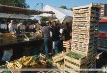 mercato rionale quarto oggiaro