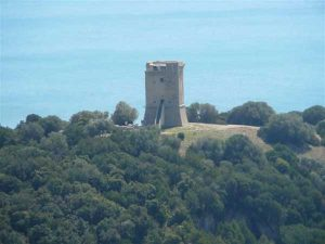 parco-della-maremma(www.tuttomaremma.com)
