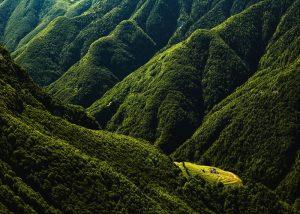 High quality-Alpe Prou-Copyright by Switzerland Tourism - By-Line swiss-image.ch_Alessandra Meniconzi Fotografo Alessan
