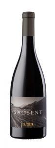 Pinot Nero Vigna Saosent