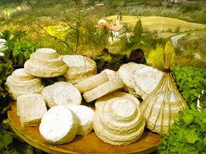 Montebore(www.valborberaespinti.com)