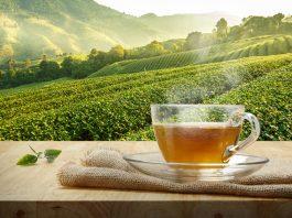 Tè bianco del Verbano