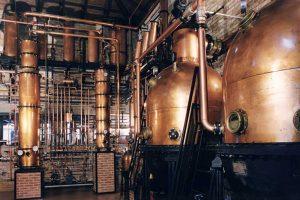 distilleria maschio